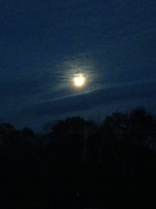 moon-at-dusk