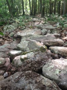 new-rock-path-2016